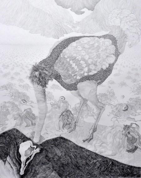 Ida Madsen Følling, 'Birds of Field & Forest: Ostrich (detalj)', blyant og akvarell på papir, 240 x 130 cm.