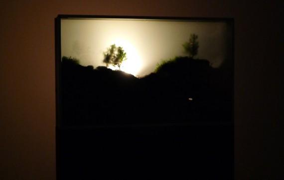 """Terike Haapoja, """"Falling Trees"""", 2013. Foto: Trine Otte Bak Nielsen."""