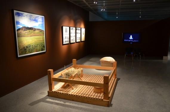 Steingrìmur Eyfjörd: The Sheep Pen, 2007. Installation/ Installasjon.