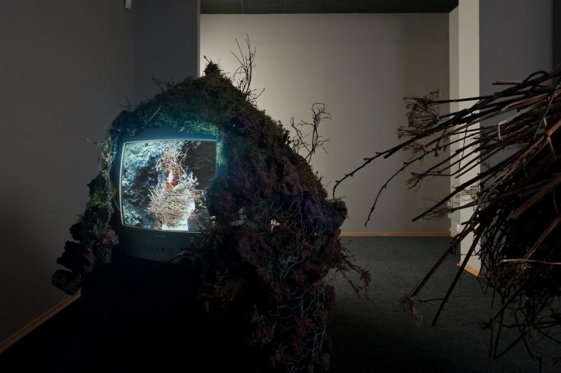 Karoline Hjorth og Riitta Ikonen,  Eyes as Big as Plates, installsjonsfoto Fotogalleriet.