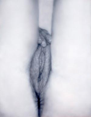 "Betty Tompkins, Masturbation Painting #6 (2011). Acrylic on canvas. 54"" x 42"". Courtesy of the artist"