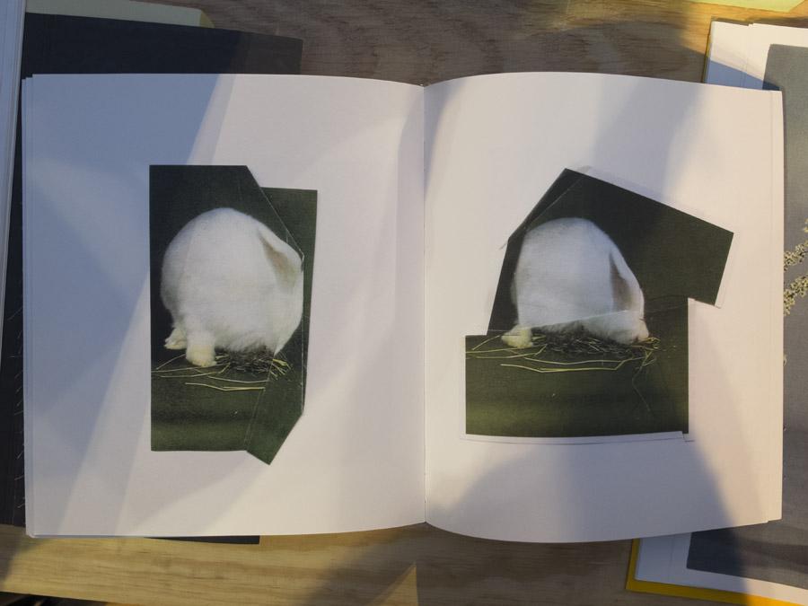Ruth van Beek, The hibernators. Foto Andrea Gamst
